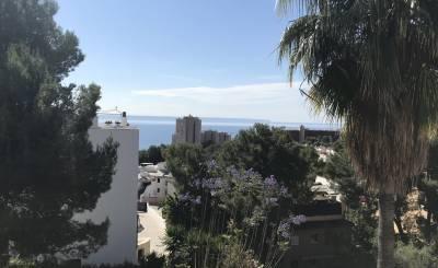 Arrendamento Apartamento Cas Català